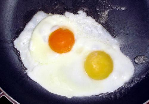 yumurta sarisi2