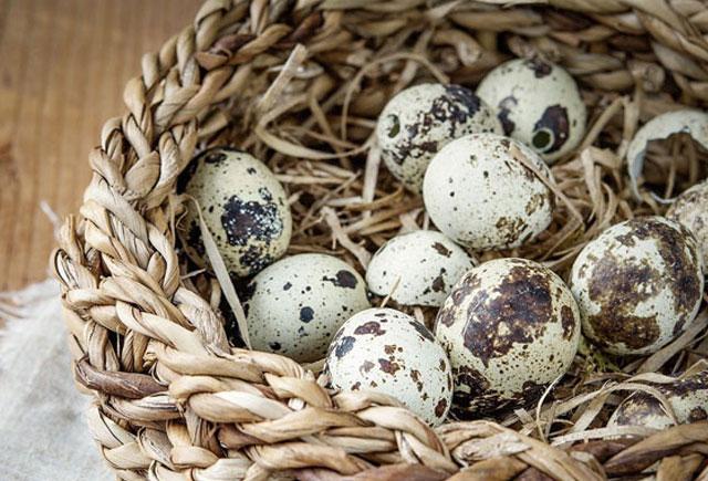 Ürəyi, yaddaşı, immuniteti gücləndirir… – Kiçik yumurtanın böyük FAYDALARI